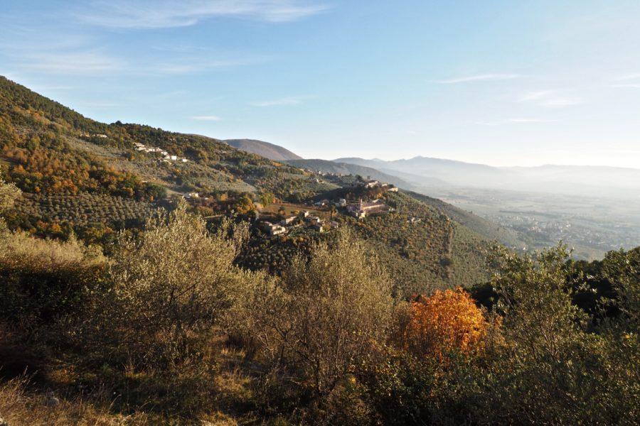 La Fascia olivata Assisi- Spoleto diventa Patrimonio agricolo di rilevanza mondiale della Fao